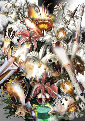 Collage_Orchidae