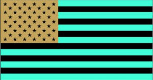 Inverted colors of American flag, also done by artist.