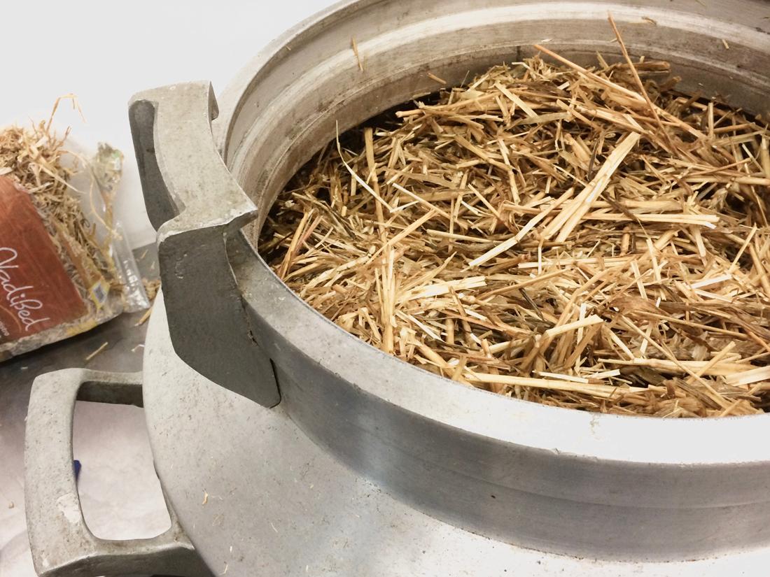 Mycelium in straw_1100