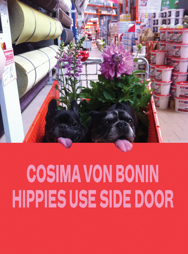 cosima-von-bonin-hippies-use-side-door-49