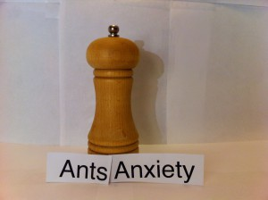 ANTS ANXIETY