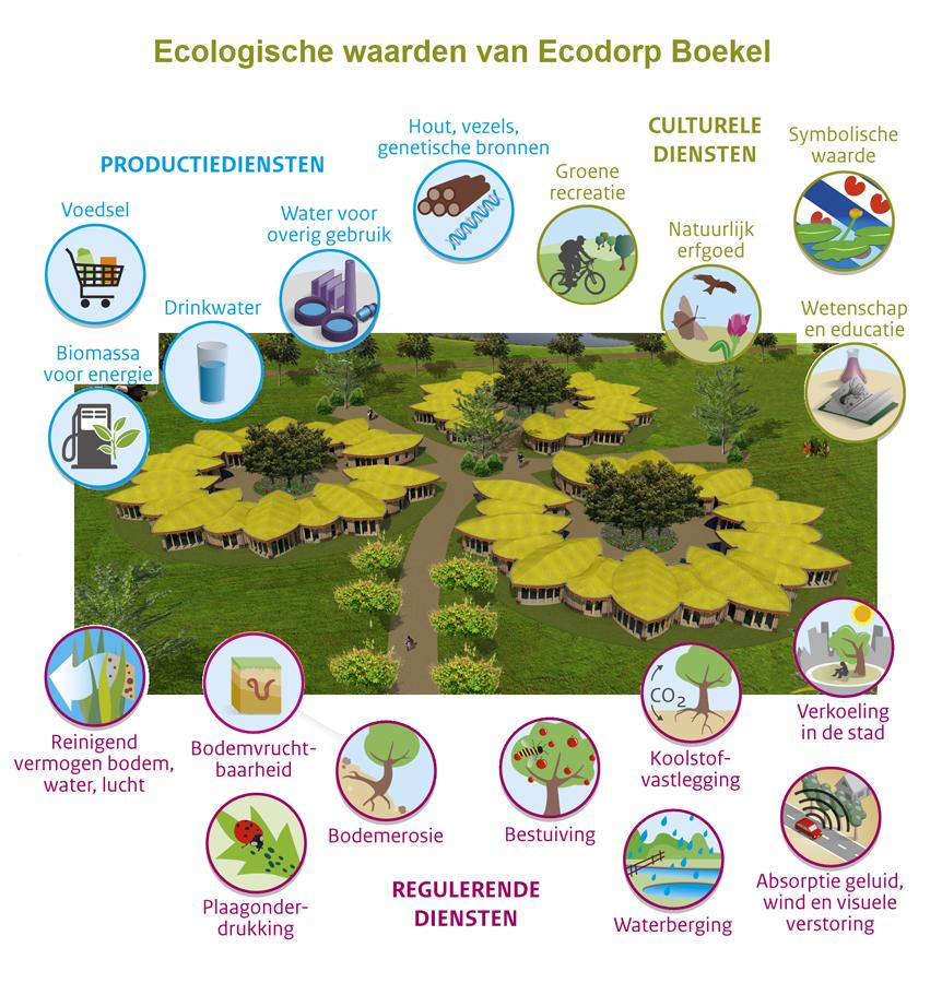 Ecologische-waarde-van-Ecodorp-Boekel