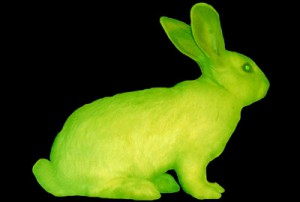 'Alba' glowing in the dark bunny, by Eduardo Kac
