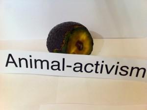 activism_1100