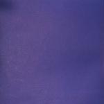 1954_2